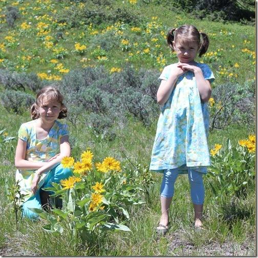 wildflowerstetons
